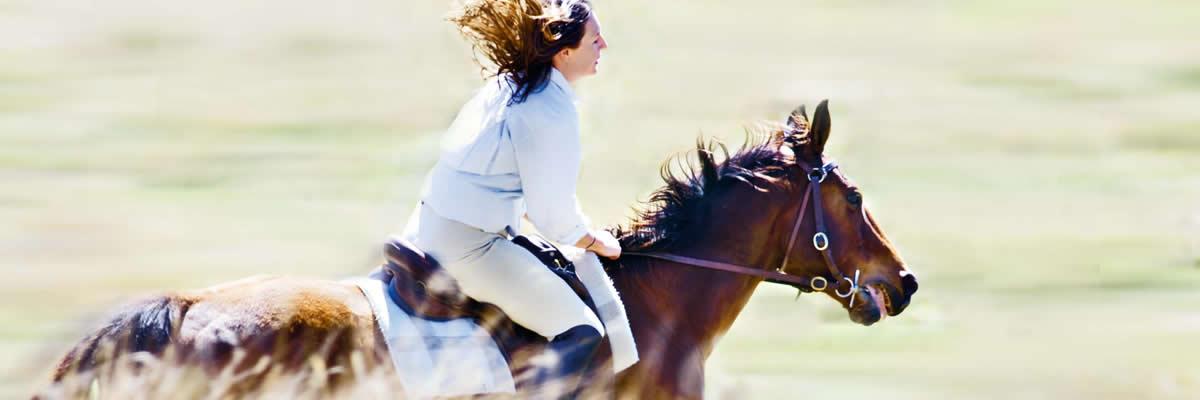 Horseback riding at nearby locations