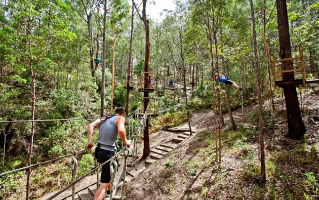 Even if you don't like to climb, Adventure Parc offers easy tree-top walks as well as advanced skills courses. 10 minutes drive from your accommodation at Amore.