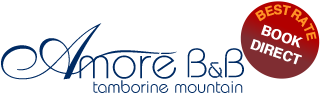 Graphic logo for Amore BandB. Luxury Tamborine accommodation.