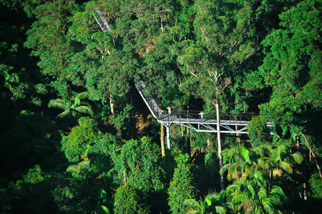 Tamborine Mountain Skywalk, and National Parks are minutes from your accommodation. Some are so close, you can walk.