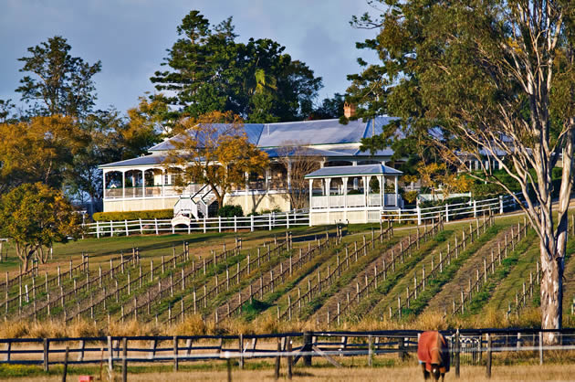 Amore BandB is close to many cellar doors and wineries. Albert Winery is about 15 minutes drive from your accommodation.