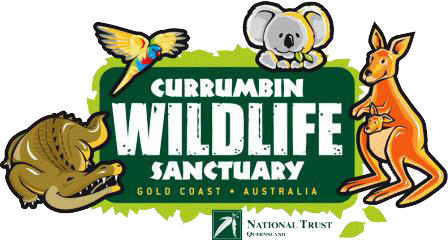 Currumbin bird sanctuary is just 45 minutes from Amore B&B - your most central Tamborine Mountain accommodation