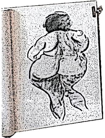 MOULDy life drawing in Mt Tamborine