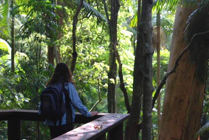 Joalah National Park is near your accommodation at Amore B&B