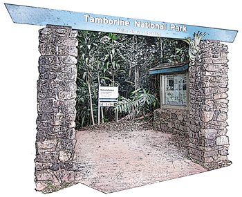 Palm Grove National Park in Palm Grove Avenue is a short walk from Amore B&B - accommodation Tamborine