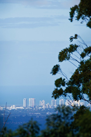 View of the Gold Coast from the entrance of Palm Grove National Park